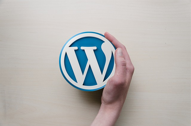 【WordPressカスタマイズまとめ!】Simplicityとマテリアルを見やすく、個性的にする13の方法