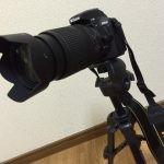 【レビュー】AF-S DX NIKKOR 18-140mm f/3.5-5.6G ED VRは普段使いに最適レンズ!